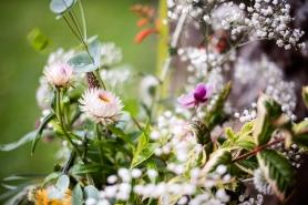 Garden flowers.